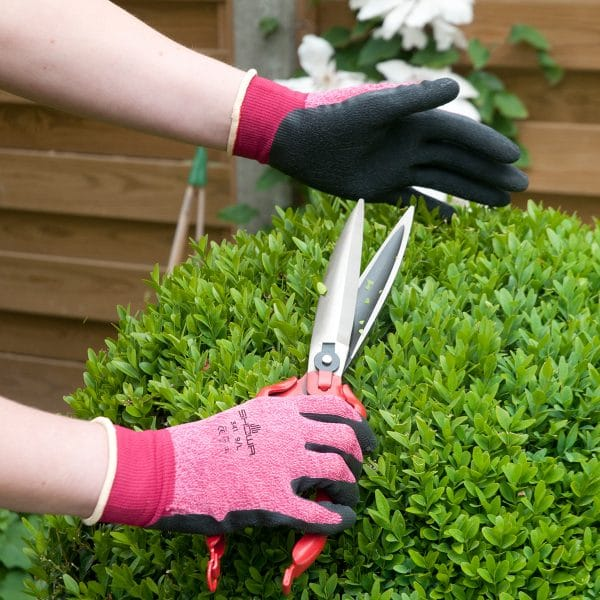 Hands wearing SHOWA 341 gloves in pink trimming a small leaf bush