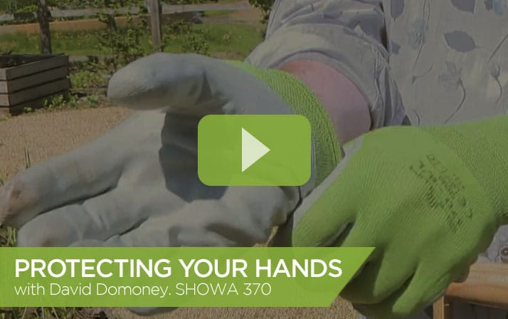 Protecting your hands with David Domoney