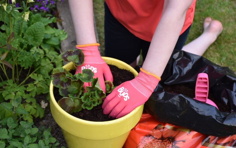 child kneeling on grass with hands wearing pick childrens gardening gloves putting soil in pot